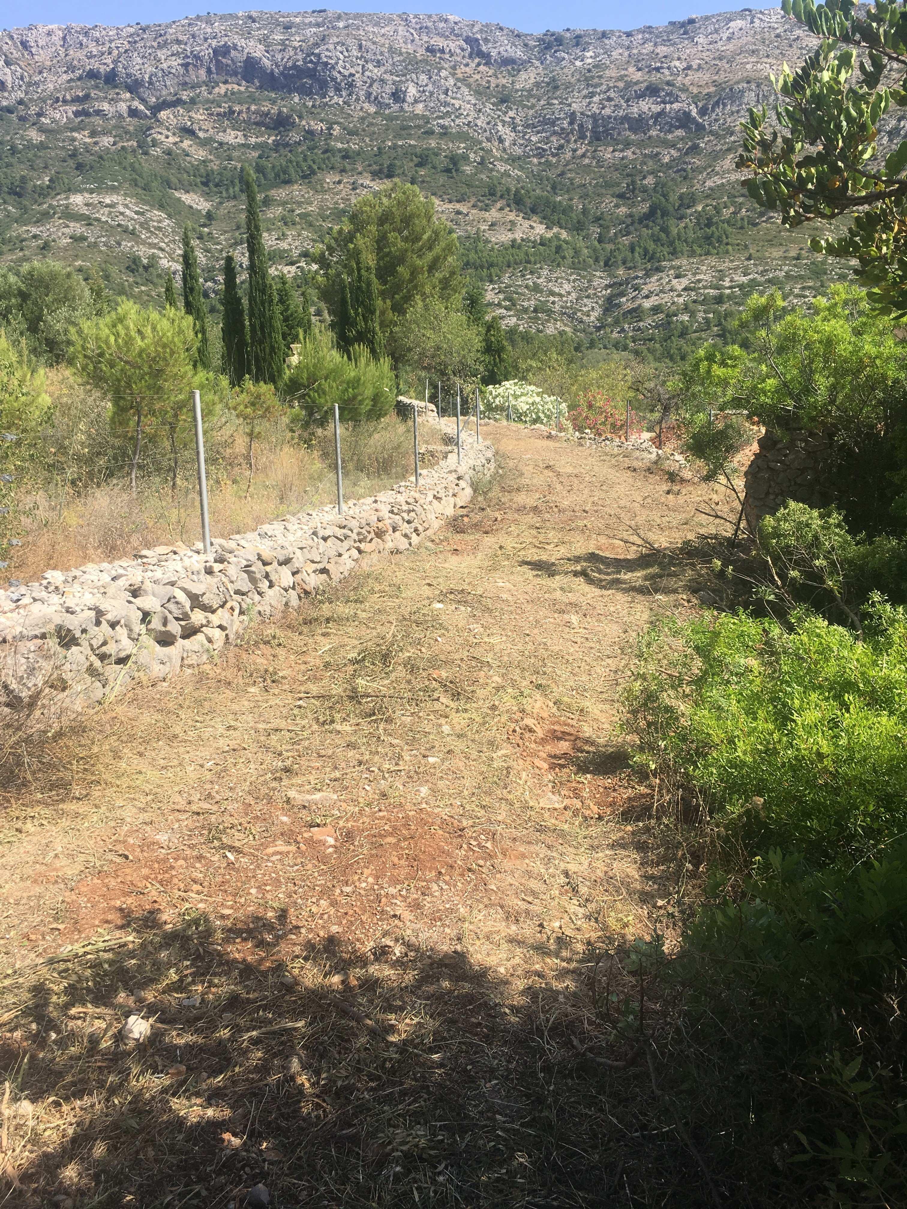 Plot in Benichembla