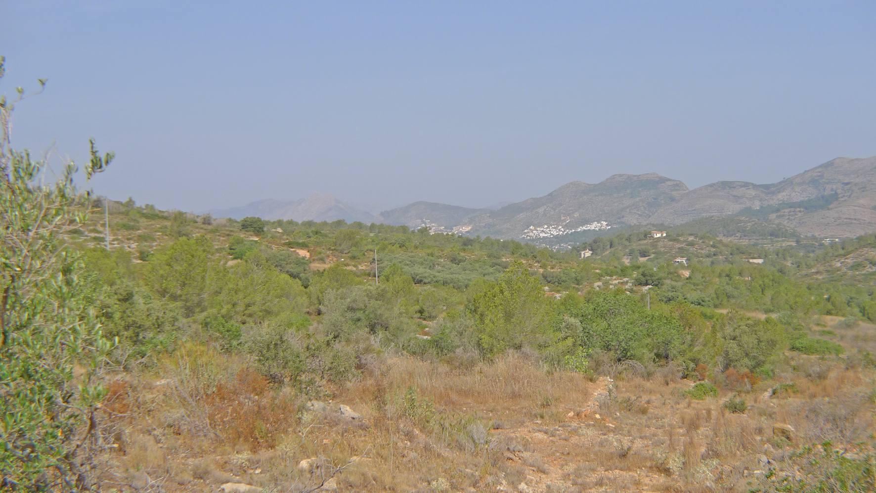 Plot in Benissa