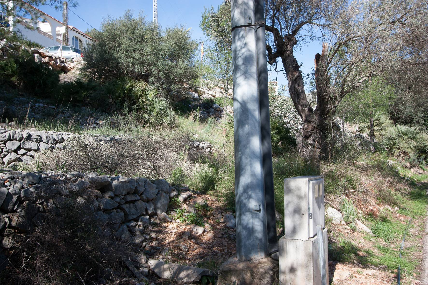 Plot in Orba