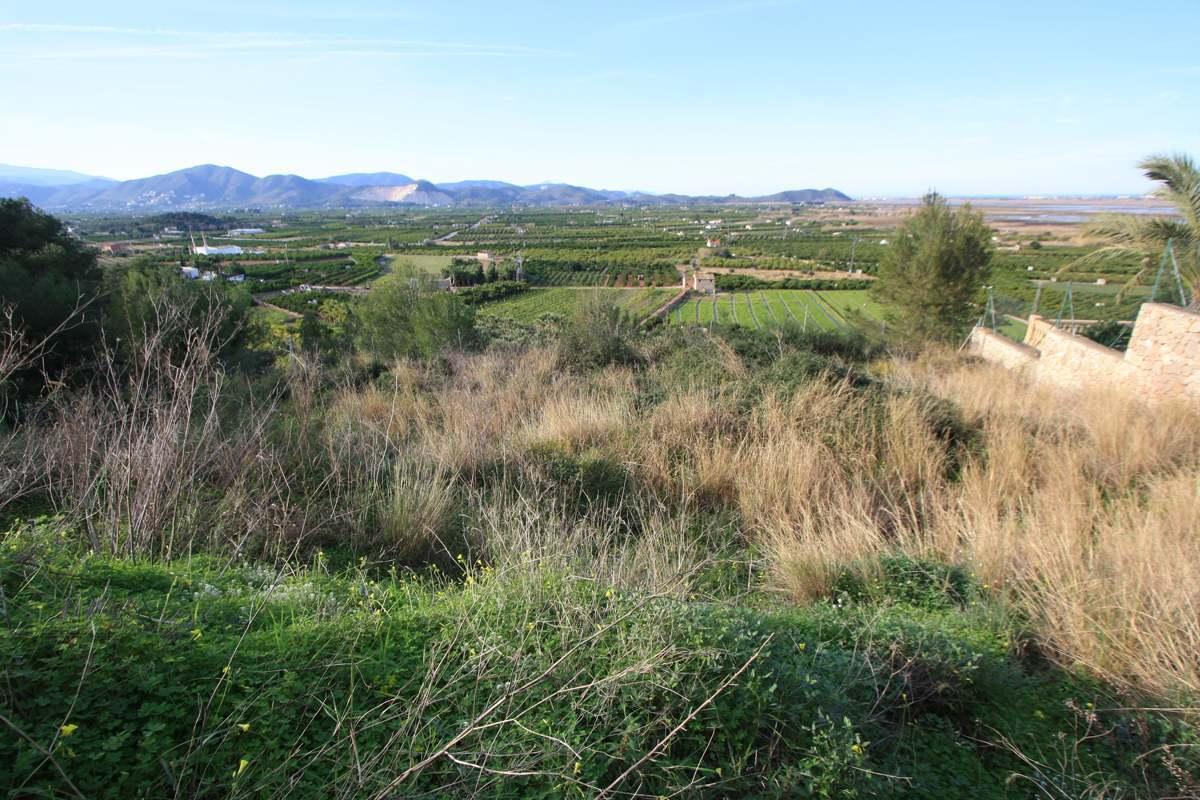 Plot in Pego Monte Pego